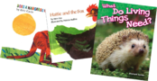 Grade 1 Striving Reader Collection
